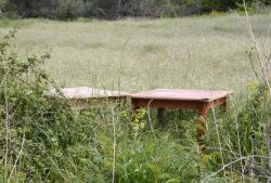06-Planted_tables